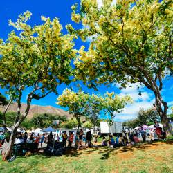 Amy's travel gallery... | Hawaii | KCC Farmers Market |